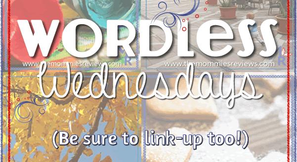 Wordless Wednesday: Theme- Taking a Walk