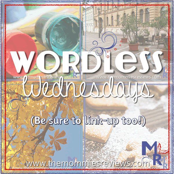 Wordless Wednesday Announcement