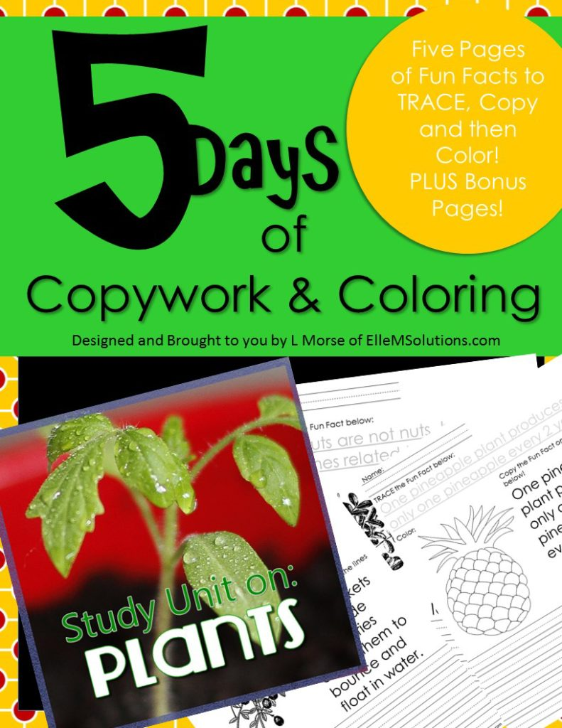 Five Days Series Study Units Plants