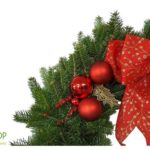 Guess Who's Joined Our Holiday Gift Guide Hilltop Christmas Tree Farms