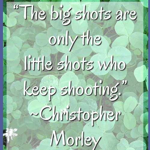 Motivational Quote Sunday's!