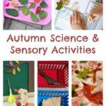 Autumn Science & Sensory Activities