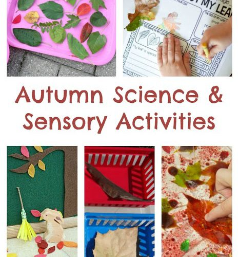 Autumn Science & Sensory Activities